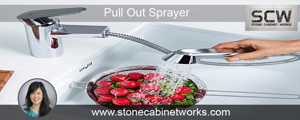 Pull Out Sprayer